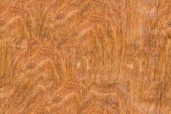 Texture en bois fine sans couture Images stock