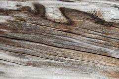 Texture en bois, fond en bois Images stock