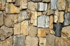 Texture en bois fossile, texture en pierre fossile Photo stock