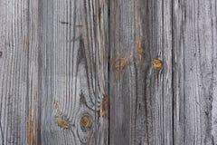 Texture en bois grise d'or Images libres de droits