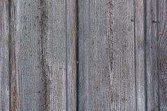 Texture en bois grise d'or Photo libre de droits