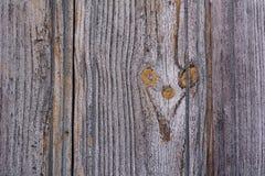 Texture en bois grise d'or photographie stock
