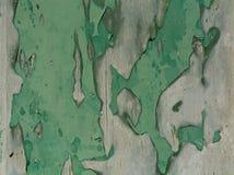 Texture en bois grise verte images libres de droits
