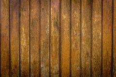 Texture en bois naturelle pour le fond avec le projecteur Photo stock