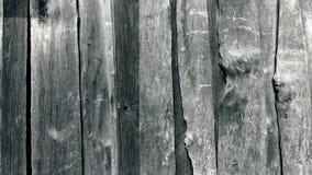 Texture en bois noire et blanche Photos stock