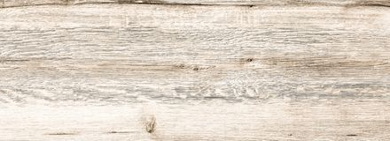 Texture en bois organique blanche Fond en bois clair Vieux bois lavé photos stock