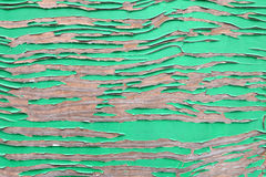 Texture en bois peinte par vert Image libre de droits