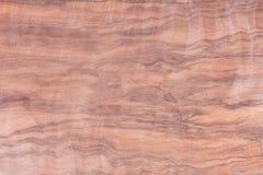 Texture en bois, photo courante, vieil arbre de fond Photos libres de droits