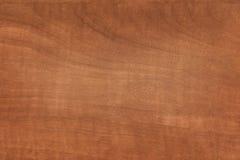 Texture en bois pour vos grandes conceptions Photographie stock libre de droits