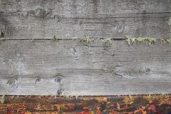 Texture en bois rustique Photographie stock