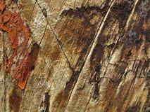Texture en bois sale Image libre de droits
