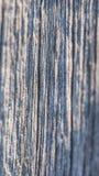 Texture en bois superficielle par les agents Image libre de droits