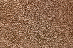 Texture en cuir Photographie stock