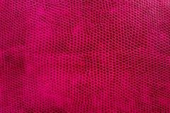 Texture en cuir Photos stock