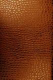 Texture en cuir de crocodile Images libres de droits