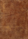Texture en cuir de QG Brown Photos stock