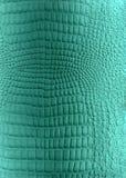 Texture en cuir de reptile Photos stock