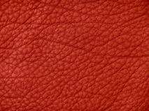 Texture en cuir rouge photo stock