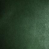 Texture en cuir verte Image stock