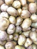 Texture en gros plan de pomme de terre Potatos organiques frais à l'arrière-plan photo libre de droits