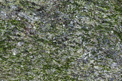 Texture en pierre Photos stock