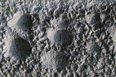 Texture en pierre Photos libres de droits