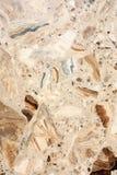 Texture en pierre de marbre Photographie stock libre de droits