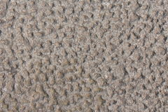 Texture en pierre de route Image stock
