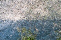Texture en pierre moussue Image stock