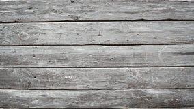 Texture et fond en bois Coupez le fond de tronc d'arbre Fin de tronc d'arbre vers le haut Macro vue de texture coupée de tronc d' Photo libre de droits