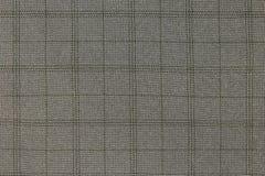 Texture fabric. Stock Photos