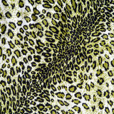Texture of fabric the striped leopard. For background Stock Images