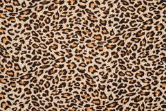 Texture of fabric striped leopard Royalty Free Stock Photo