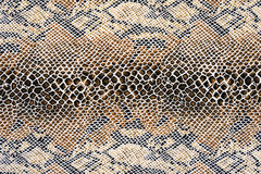 Texture of fabric striped snake leather Royalty Free Stock Photography