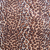 The texture of fabric stripes leopard Royalty Free Stock Image