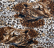 Texture of fabric stripes leopard Royalty Free Stock Photography