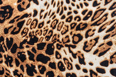 The texture of fabric stripes leopard Royalty Free Stock Photography