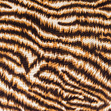 Texture of fabric stripes tiger Royalty Free Stock Image