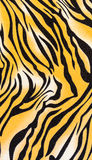 Texture of fabric stripes tiger. For background royalty free stock image
