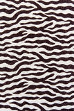 Texture of fabric stripes zebra Stock Photography