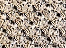 Texture of fabric stripes zebra. For background royalty free stock photography