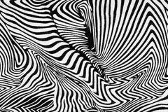 Texture of fabric stripes zebra Stock Images