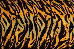 Texture fabric of tiger Stock Photography