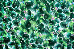 texture fabric Vintage Hawaiian parrot and leaves Stock Images