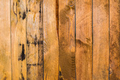 Texture of a fence of wooden boards. The texture of a fence of wooden boards royalty free stock images