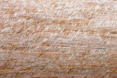 Texture of Fibrous timbe Stock Images