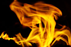 Texture of fire on a black background flash Stock Photography