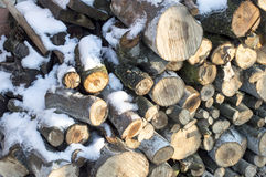 Texture-firewood cut into ridges covered with white snow Stock Photos