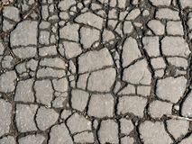 Texture. Fissures. Asphalte. Photo stock