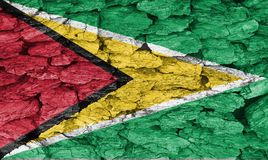 Texture of flag Guyana. Texture of Guyana flag of on a decorative tree bark Royalty Free Stock Photos